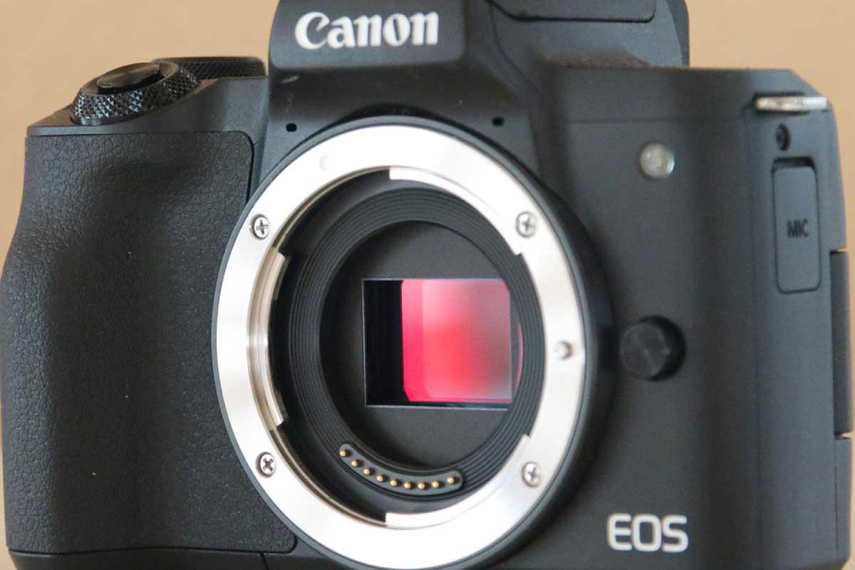 Canon EOS Kiss M2のAPS-Cセンサー画像